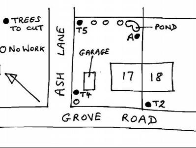 sketch plan for tree works applications